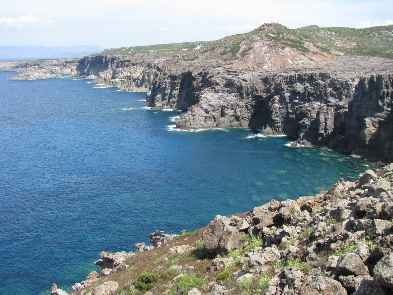 Isola di S.Pietro. Img_1310