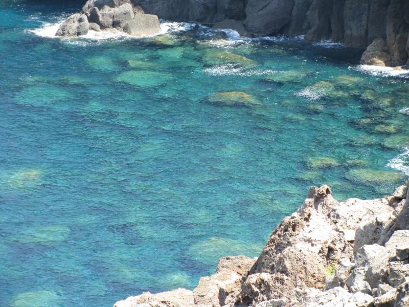 Isola di S.Pietro. Img_1311