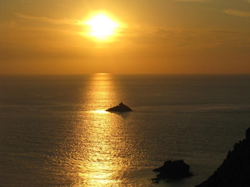 Isola di S.Pietro. Img_1312