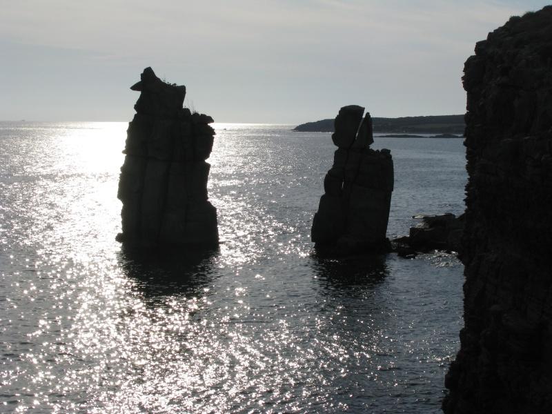Isola di S.Pietro. Img_1313