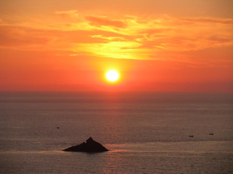 Isola di S.Pietro. Img_1413