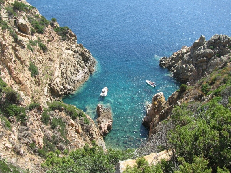 Mare...mare...mare...voglio annegareeeeee... Img_2010
