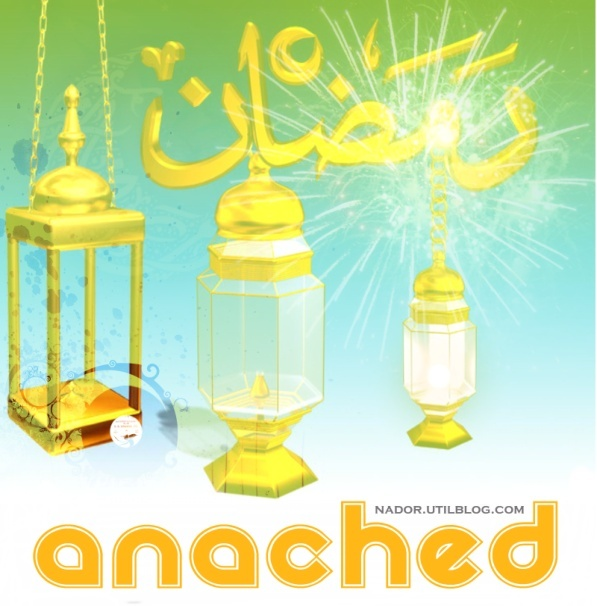 Anached Ramadan 2010 Journa10