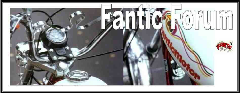 www.fantic-chopper.com