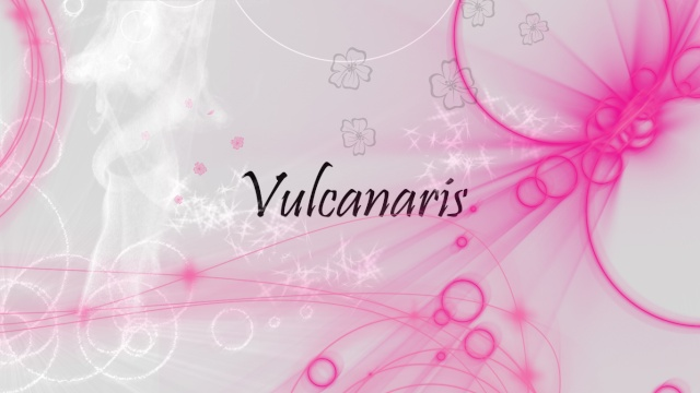 Vulcanaris~ The MapleStory Guild