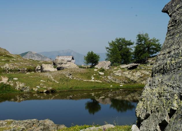 L'esprit des lieux : les mélèzes dans la Vallée des Merveilles Dsc07511
