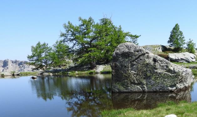 L'esprit des lieux : les mélèzes dans la Vallée des Merveilles Dscn1711