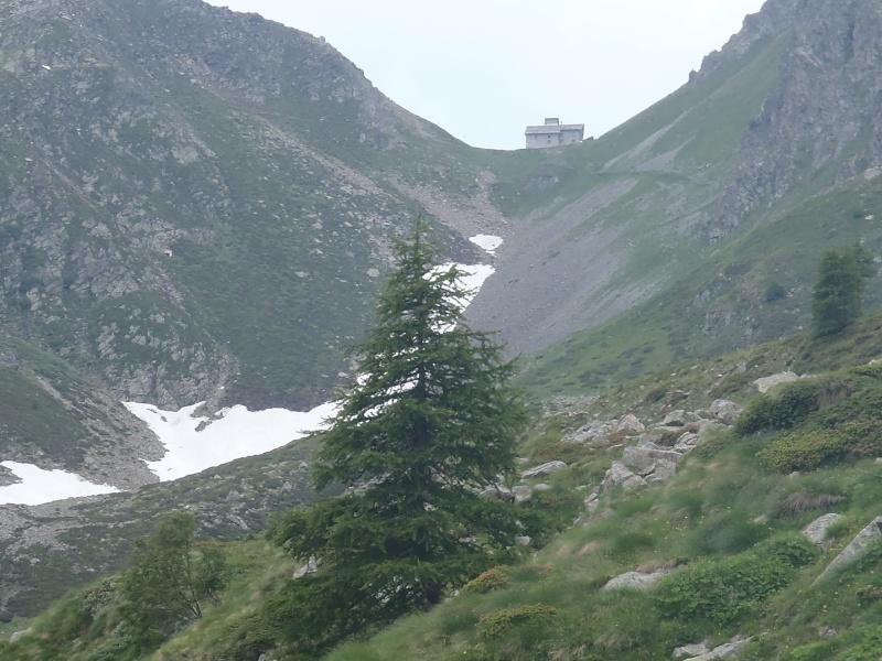 RANDOCABO sur la Via Alpina P7030110