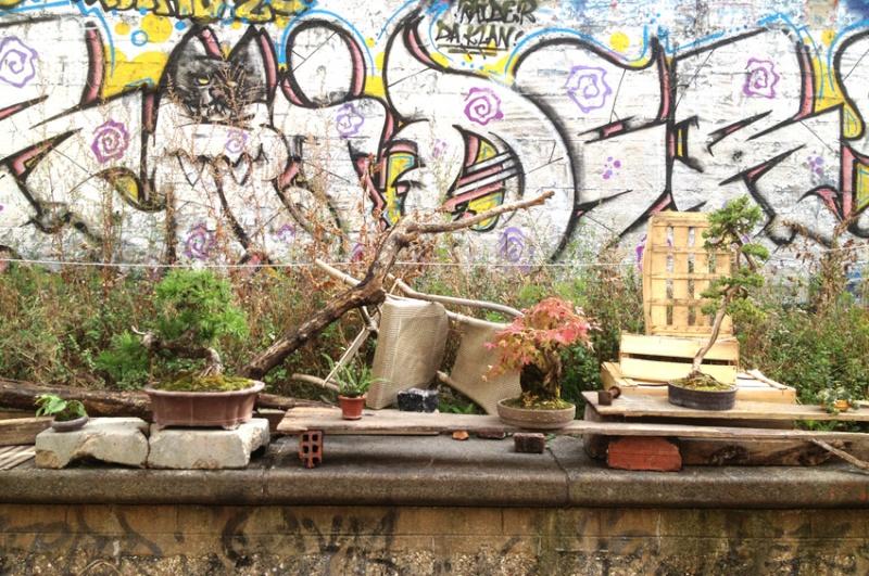 Urban bonsaïs Expo10