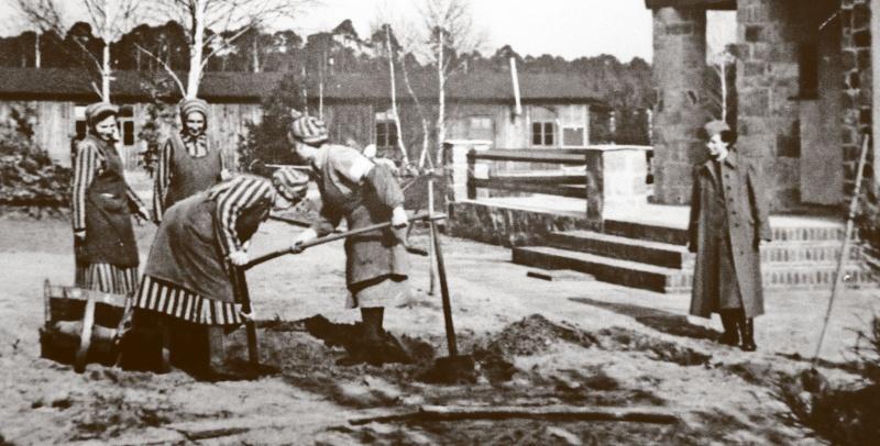 Les femmes dans la SS Img_1610