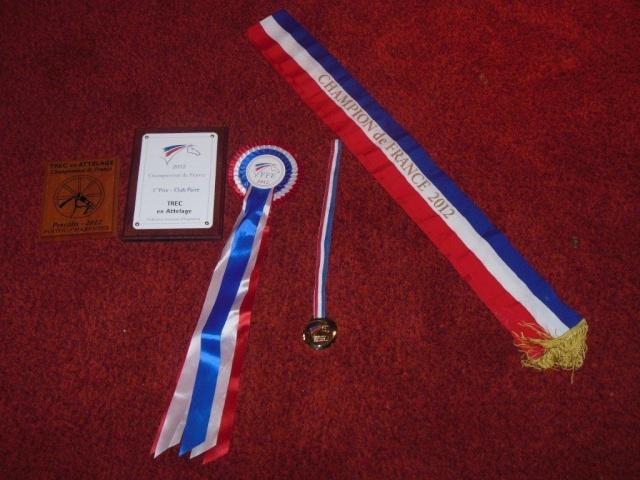 SAIGA ET PICCOLO CHAMPIONS DE FRANCE DE TREC EN ATTELAGE  Dscn0917