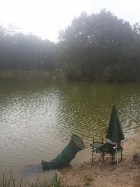 Lac mousseau dans le 37 00311