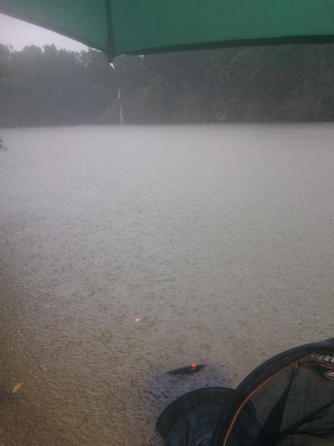 Lac mousseau dans le 37 00810