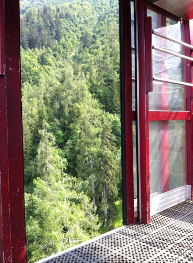 Photos en été - Les Houches - Page 2 37437411