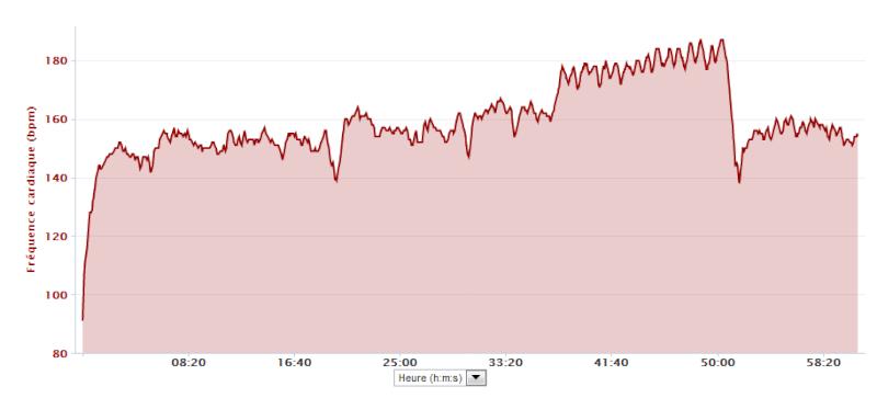 GeMT ---) Prépa marathon de Toulouse 28/10/12 2012-018
