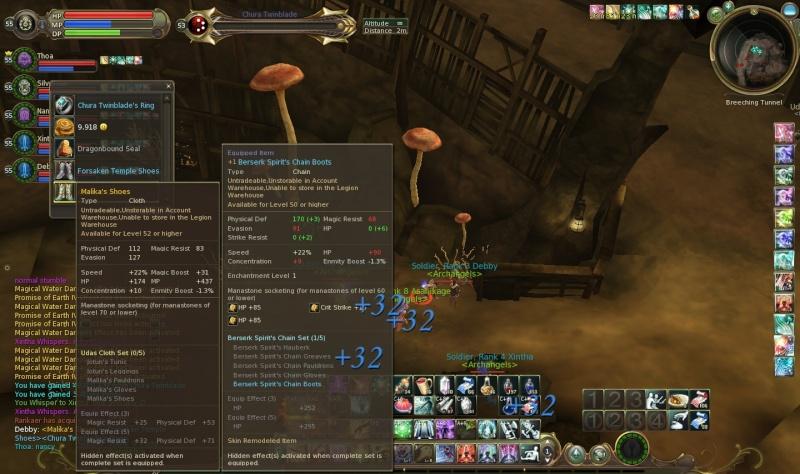 09.01.2011 - Chura Twinblade Aion0021