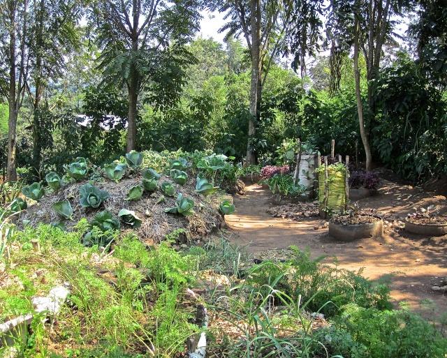 ART DU JARDIN jardins d'exception, fleurs d'exception 1_1_1329