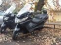 Premier scooter (depuis mes 14 ans :) ) Burgma10