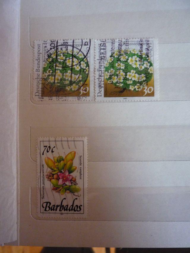 Wer kann mir helfen?  Brauchbare Briefmarken? Seite_13