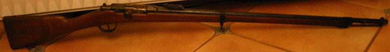 Les armes de Bosquetia (Màj 13/07/2011) St_eti10