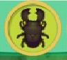 liste des insectes en images Cerf-v10