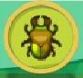 liste des insectes en images Copris10
