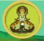 liste des insectes en images Lanter10