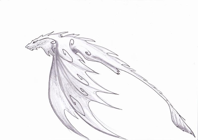 Plein de dragons [noony4] Dragon11