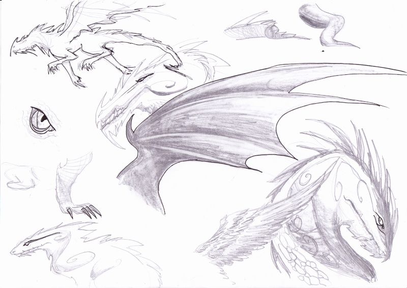 Plein de dragons [noony4] Essais10