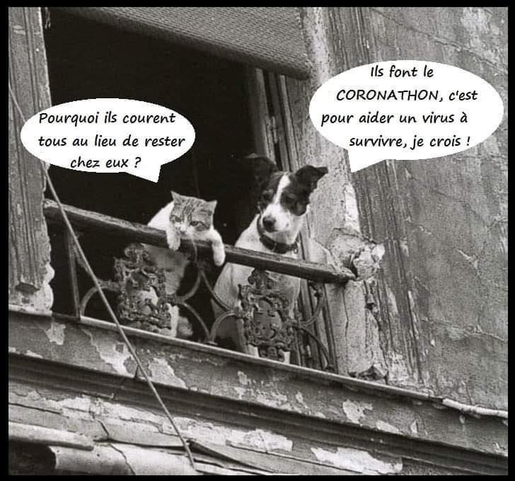 (Re)(Dé)-Confinement !! - Page 4 94310010