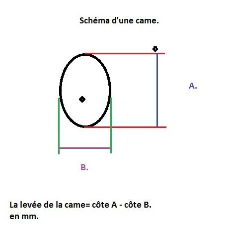Différences AAC Schzom10