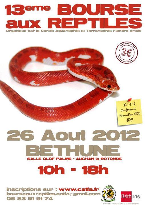 Bourse reptile Béthune  Bethun10