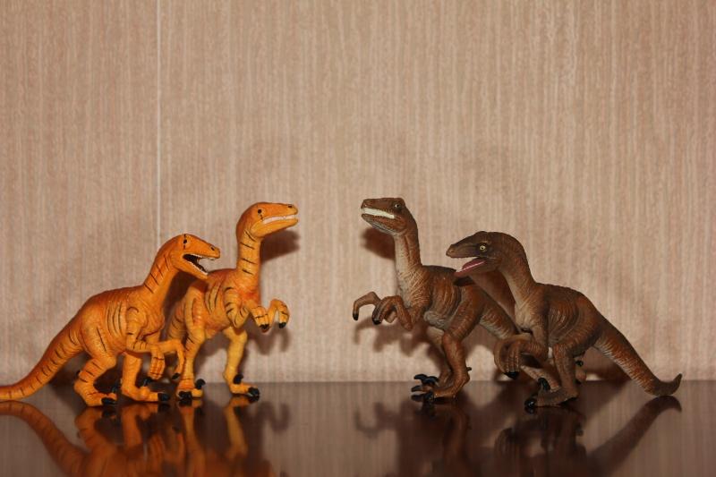 Mojo Fun Velociraptors- 2012 and 2013 comparison Img_9212
