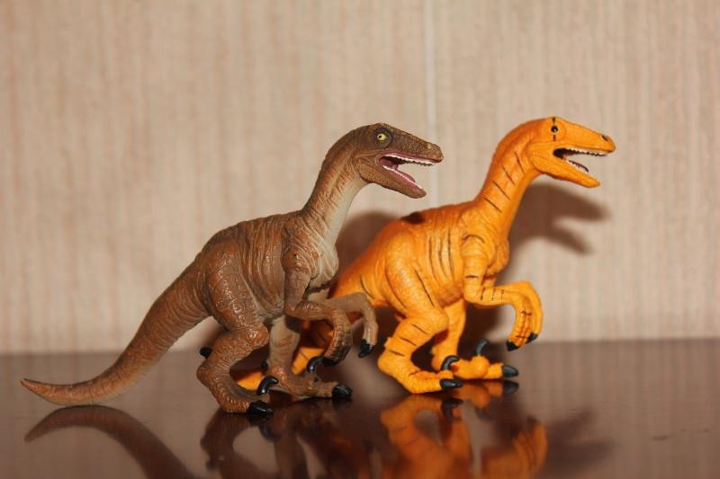 Mojo Fun Velociraptors- 2012 and 2013 comparison Img_9214
