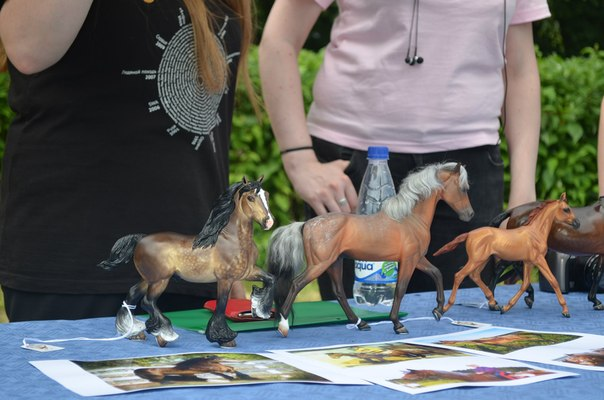 First model horse show ever held in Russia Ix3nui10