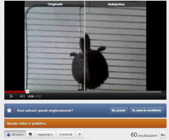 L'intelligenza di Youtube: la migliore che esista al mondo per editare e condividere i video 2q3oft10