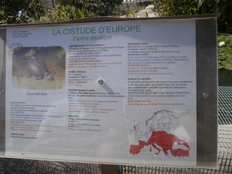 La Vallée des tortues - Sorède - 15.09.2012/13/04/2014 P9150016