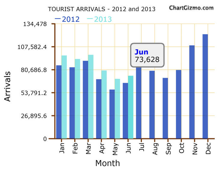 Sri Lanka tourist arrivals up 12.8-pct in June Tour10
