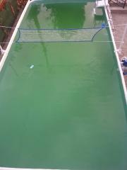eau tres verte, traitement en cours 20130812