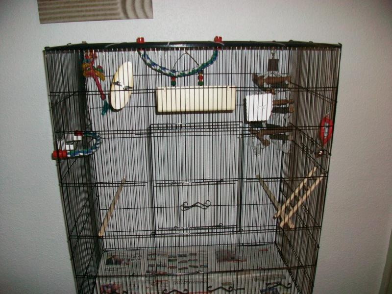 Bien organiser sa cage 2.0.  - Page 4 100_2310