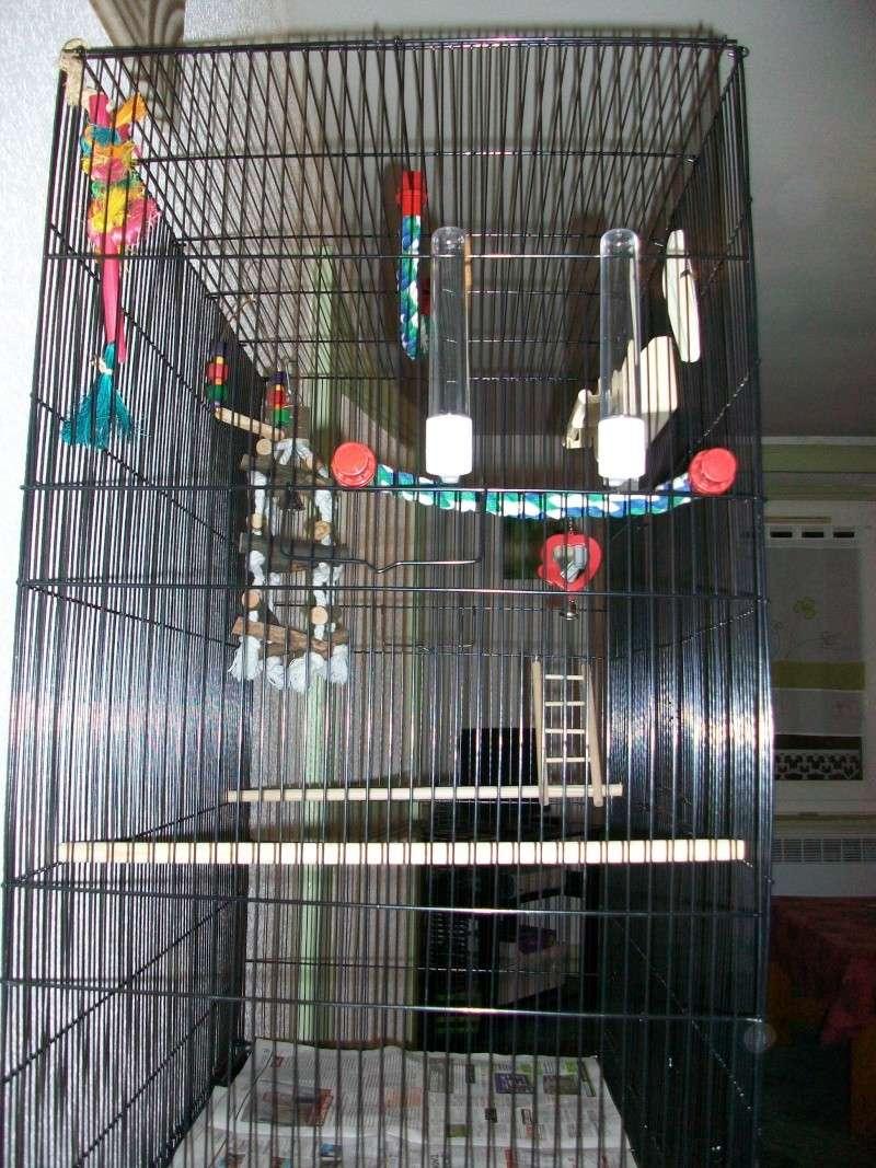 Bien organiser sa cage 2.0.  - Page 4 100_2312