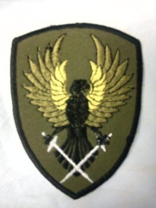 ANA patches ID thread. Dsc00410