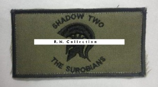 Can this patch be NZ SAS from Afghanistan? Nzsas_11