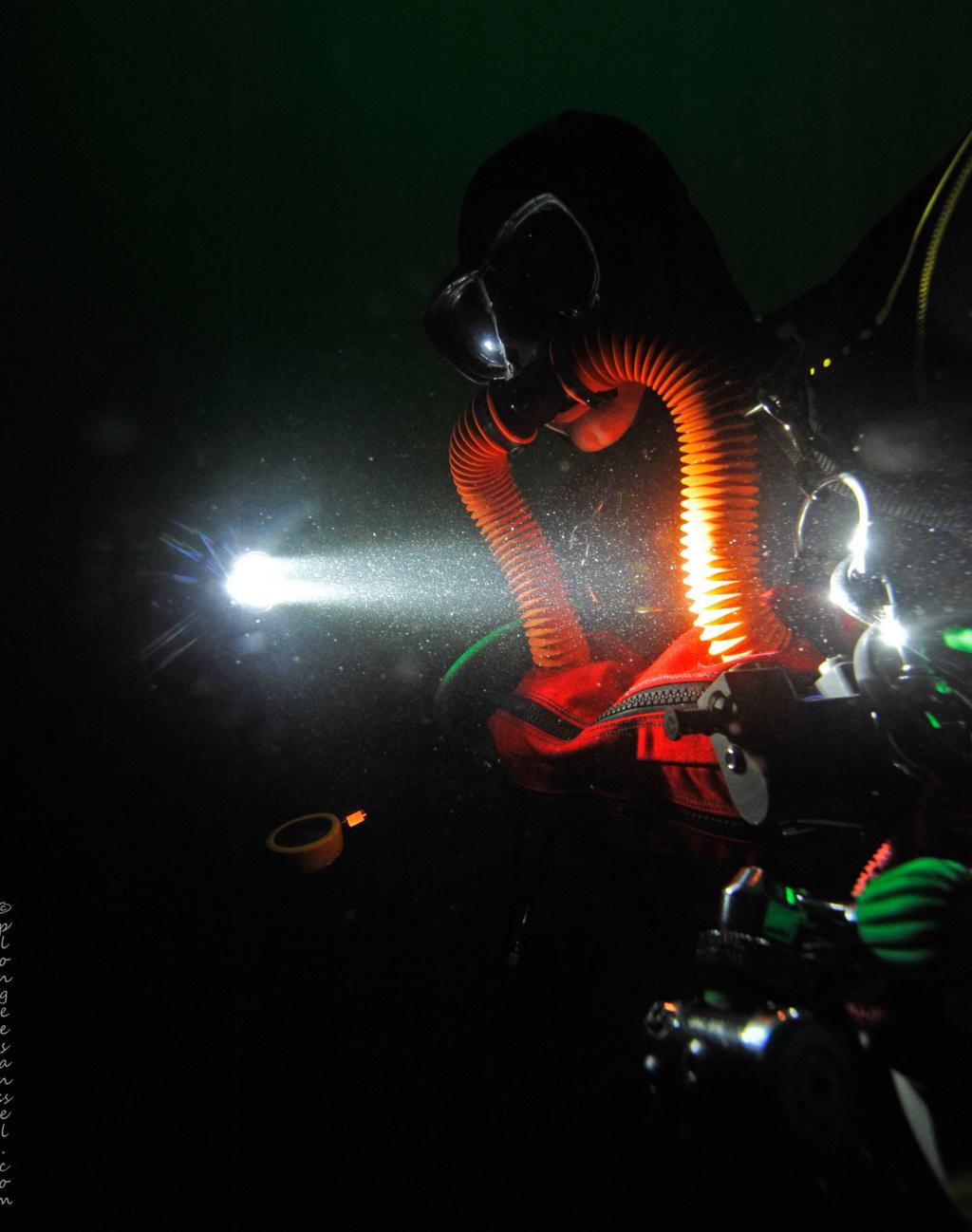plongée en Salamandre _dsc3913