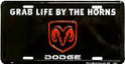 (F) Dodge Ram 2500 Plaque10
