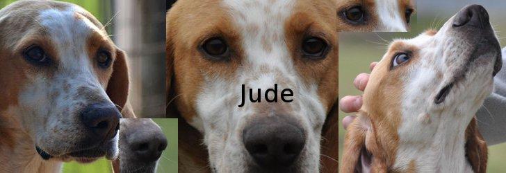 JUDE (Billy) - Page 4 Jude11