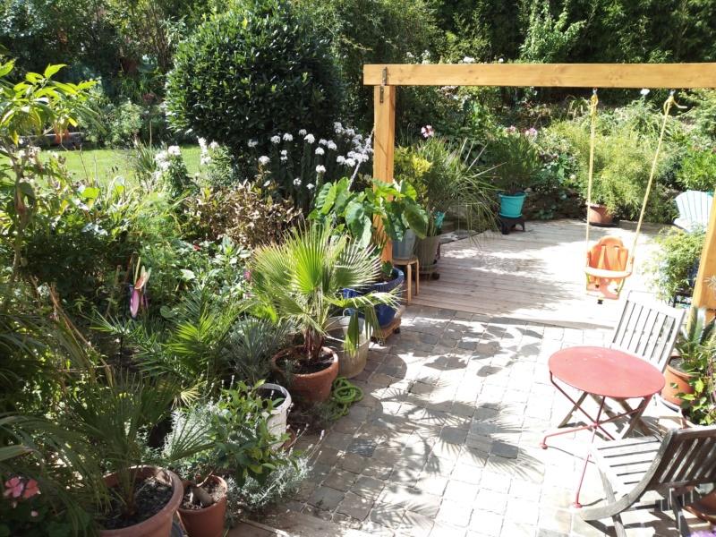Mon jardin Ardennais Img_2037