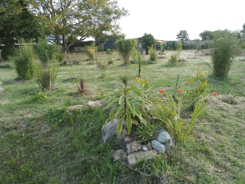Jardin guiziérois Img_2054