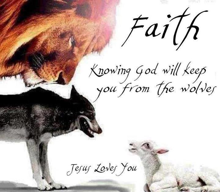 Faith... 26019510