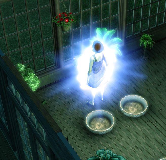 Les Sims™ 3 : Super-pouvoirs - Page 4 Buis10